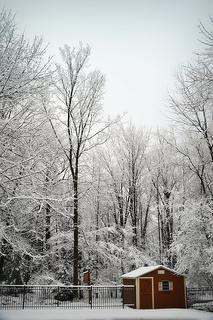 "<alt=""winter morning""/>"