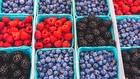 """<img src=""""image.gif"""" alt=""""baskets of fruit"""" />"""