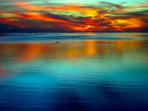 "<img src=""image.gif"" alt=""ocean"" />"